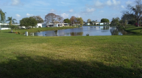 Backyard lakeview.